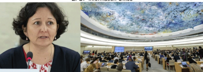 UN Human Rights Council Receives Yet another Grim Report on Eritrea