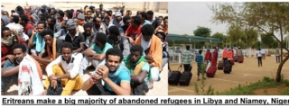 EPDP & Sister Organizations Appeal on Behalf of Distressed Refugees in Libya